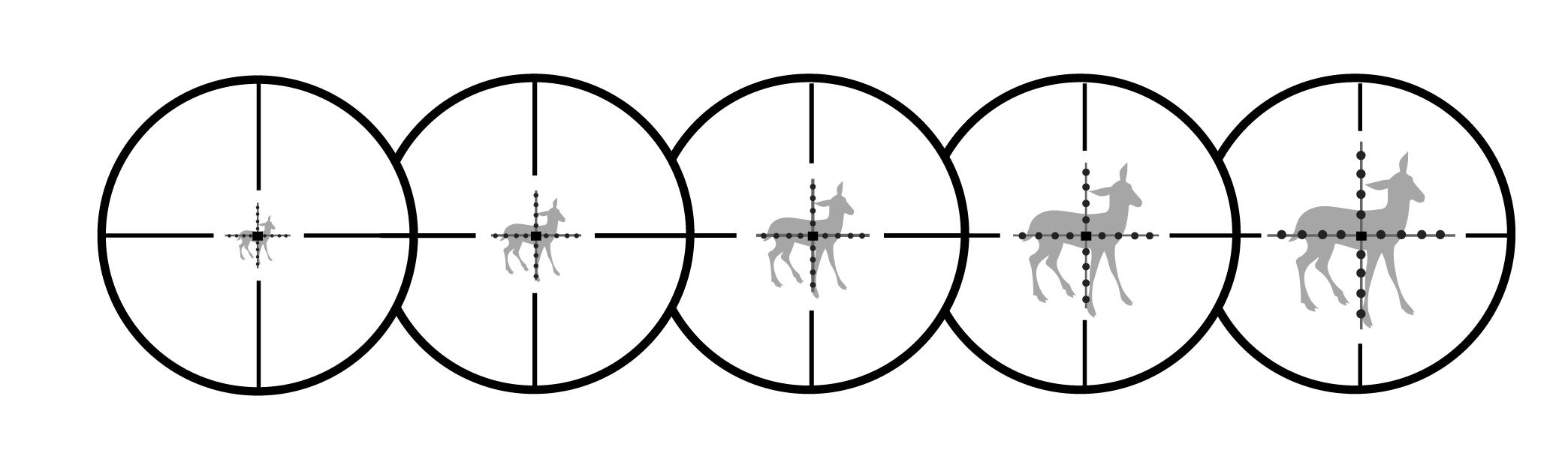 plano focal fotografias